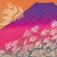 牧野 宗則(まきの むねのり)MAKINO Munenori